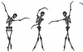 Wonderful Bones